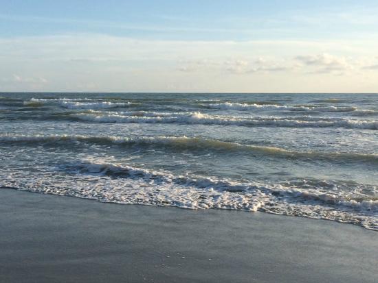 Brunella: море