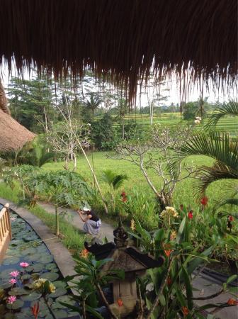 Bali Suma Tours