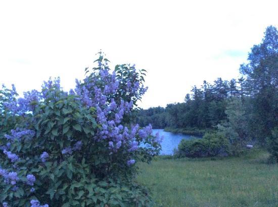 Pleasant Mountain Inn: dusk