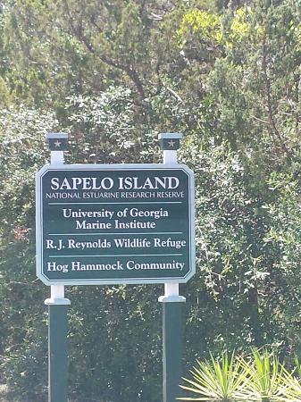 ‪Sapelo Island Visitors Center‬