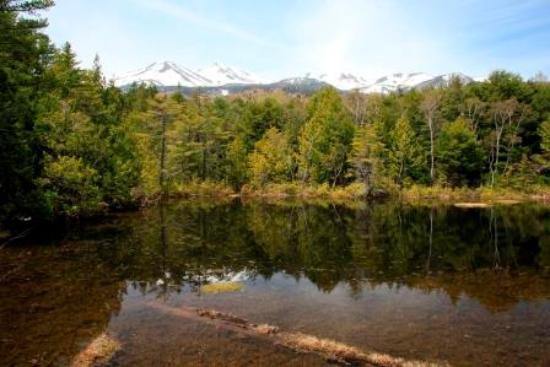 東屋から見る牛留池と乗鞍岳 - ...