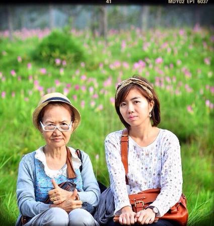 Pa Hin Ngam National Park: ทุ่งดอกทิวลิปสยาม