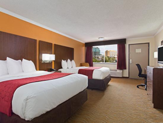 Ramada Westshore Tampa Airport: City View Double