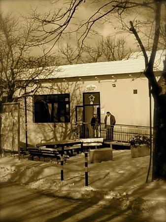 Centro Sociale Comunale Di Cingoli