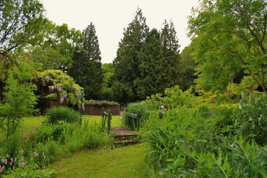 Langford Budville, UK: Views in the garden.