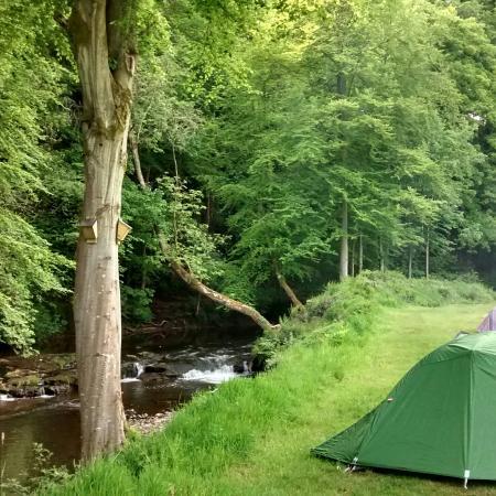 Priory Mill Farm Campsite