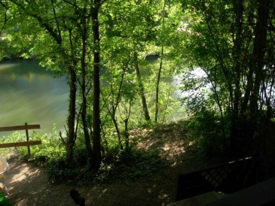 Le Jardin de la Reyssouze : bord de rivière