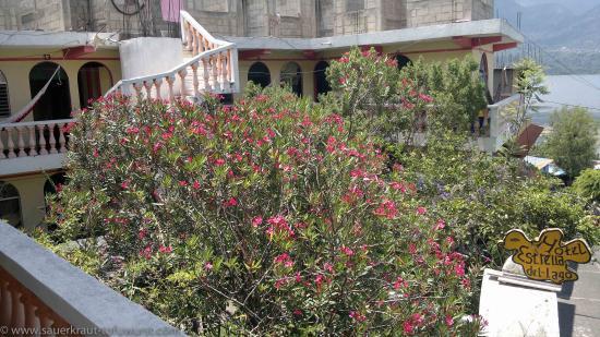 Hospedaje Estrella del Lago: Hotel with a view