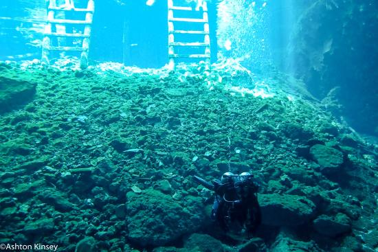 Gran cenote picture of dive shop mexico playa del - Dive shop mexico ...