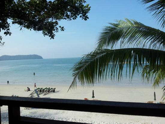 Malibest Resort: Tree house view