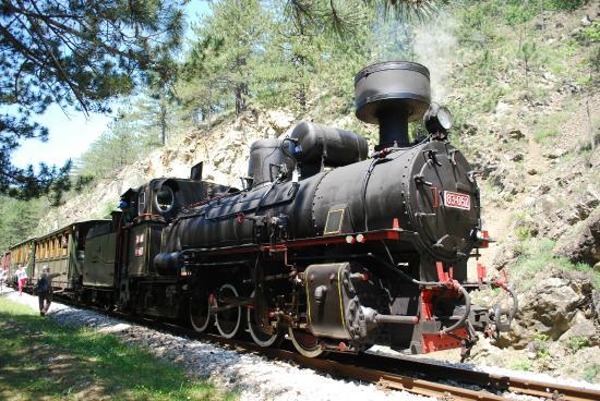 Sargan Eight Railway: the train