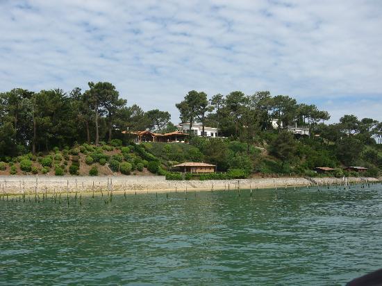 Les Pinasses du Bassin d'Arcachon  Tours : vue du bateau