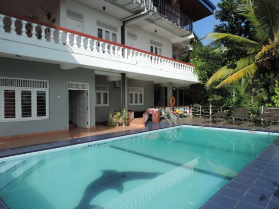 swimming pool, Blue Haven Guest House - Picture of Blue ...
