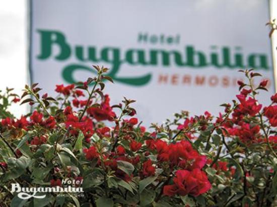 Bugambilia Hermosillo: Vista Hotel