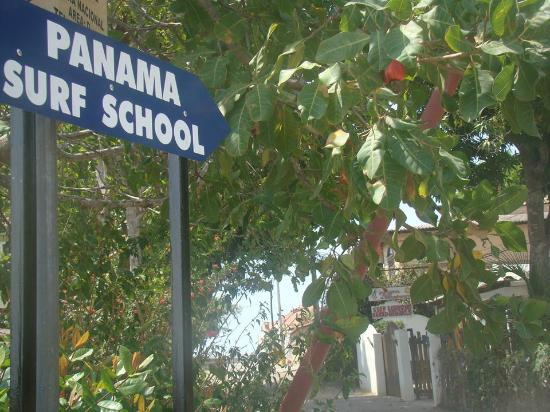 Panama Surf School Day Classes: this is the street signal