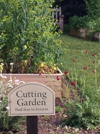 The Fearrington House Inn : More gardens.
