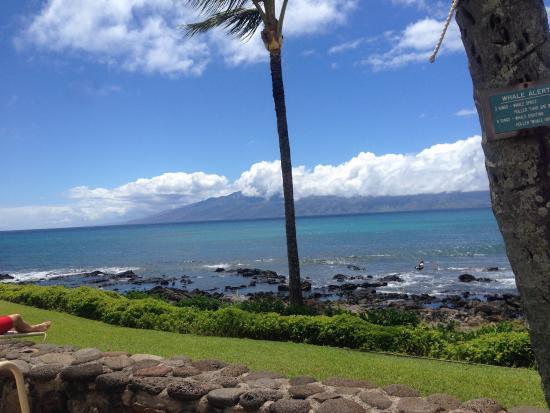 The Mauian Hotel on Napili Beach: photo1.jpg