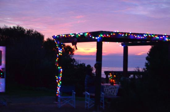 San Clemente, CA: Christmas at SCSB