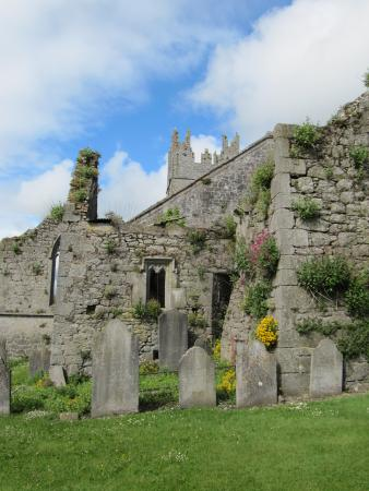 Fethard, Ireland: Walls in Holy Trinity Church grounds