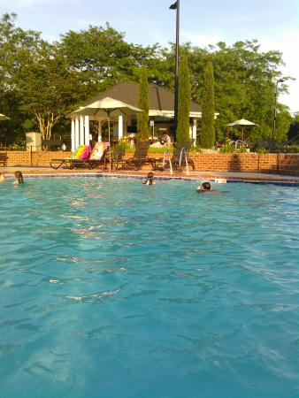 Pool - The Historic Powhatan Resort Photo