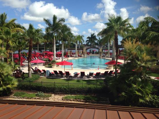 Pool picture of pga national resort spa palm beach gardens tripadvisor for Pga national palm beach gardens