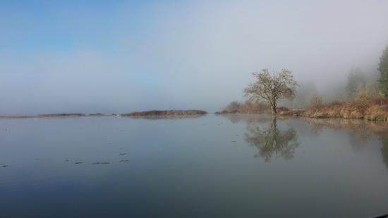 Silverlake, WA: West end of lake in the morning
