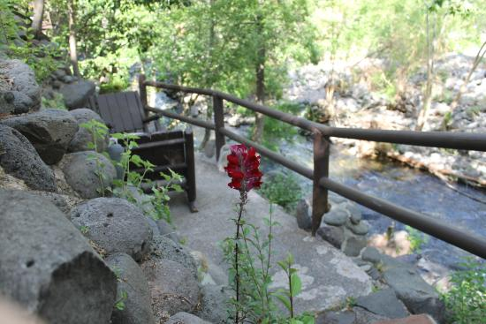 Oak creek briar patch inn amherst