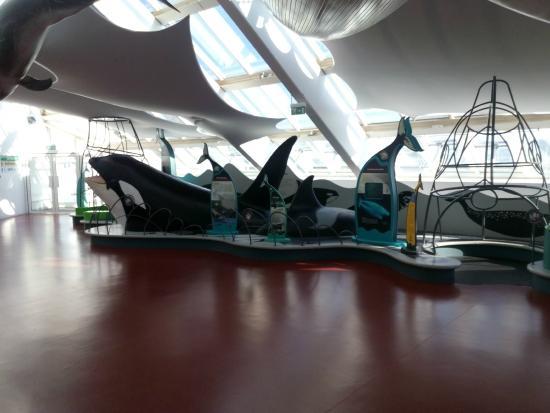 Oceanopolis - Picture of Oceanopolis, Brest - TripAdvisor