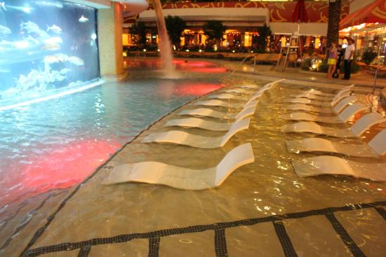 Pool Side Day Picture Of Golden Nugget Hotel Las Vegas Tripadvisor