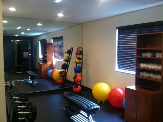 Comfort Inn Muskegon: FITNESS ROOM WEIGHT BALLS