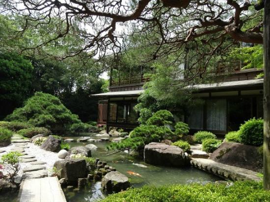 Matsudaya Hotel : 庭