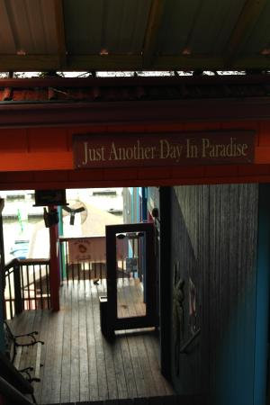 Paradise Tropical Restaurant & Bar : Just Another Day In Paradise - Entryway from car lot