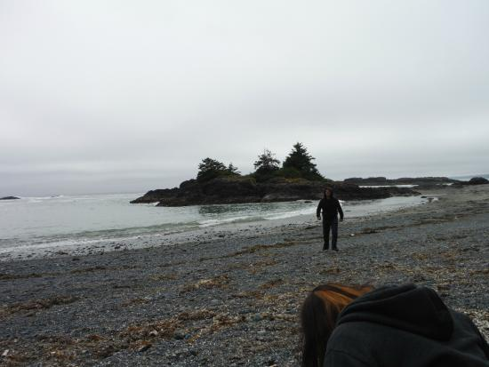 Lismer Cove - Picture of Long ...