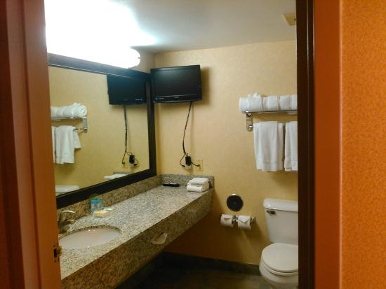 Holiday Inn Hotel & Suites Wausau-Rothschild : updated bathroom even with a TV