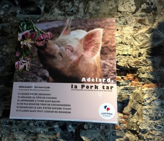 Le Petit Cochon Dingue: duvar