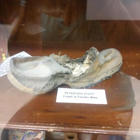 Foto de White Pine Public Museum