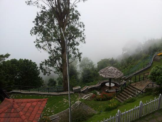 Zest @ Coakers Villa: Garden view from the room.