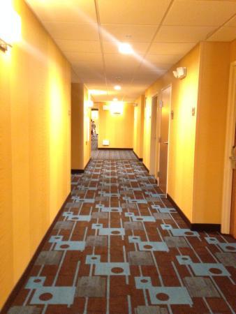 Fairfield Inn & Suites Yakima: New carpet and wallpaper?