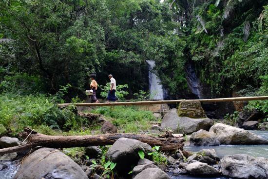 Bintang Lodge: Cascata nei pressi dell'hotel