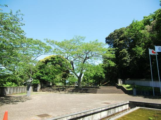 Tateyama Municipal Museum