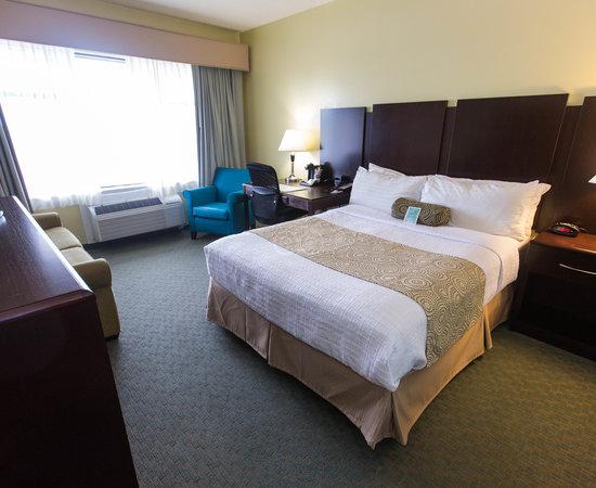 The Standard Queen Room at Best Western Plus Coastline Inn