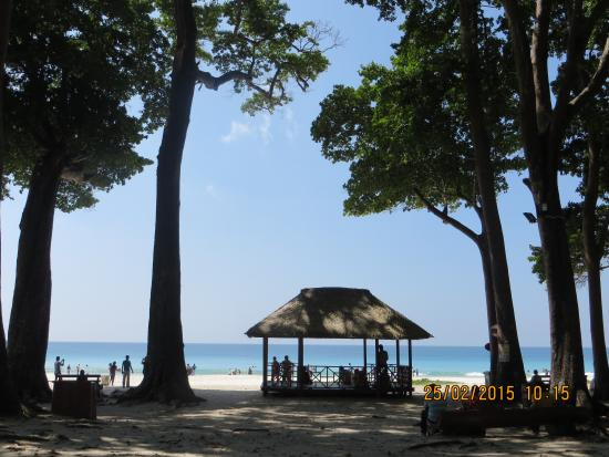 Havelock Island, Indien: View from beach woods