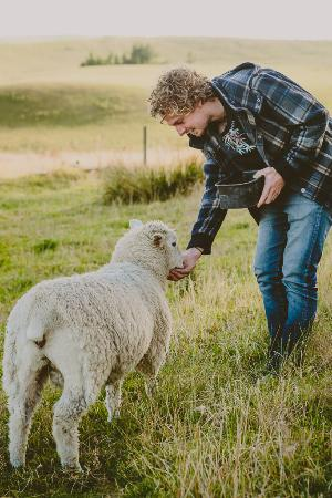 Slope Point backpackers: feeding the sheep