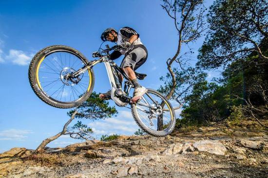 Dorset CycleLife