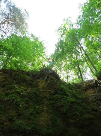 Скачать обои Пещера, лестница, лес бесплатно для рабочего стола в ... | 450x337