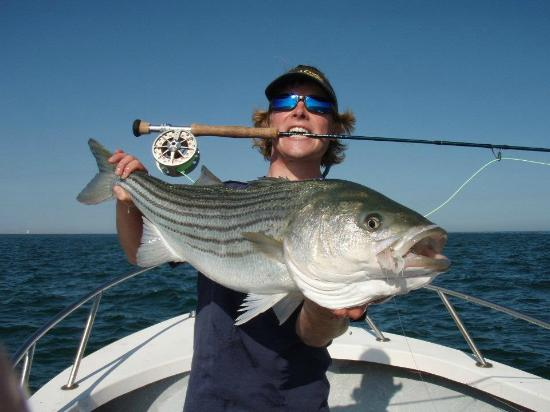 Topspin fishing nantucket picture of fishing nantucket for Nantucket fishing report
