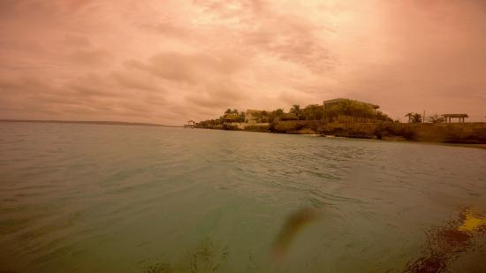 Bachelor's Beach : View from the Buoy