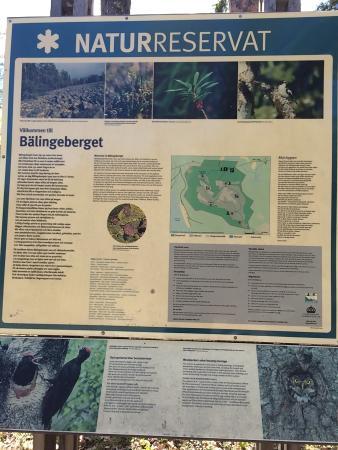 Balingeberget Nature Reserve