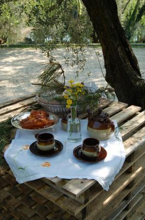 Podere Palazzina : colazione all'aperto