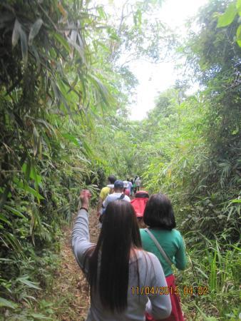 Mt. Cadig: Mount Cadig trek in Bayabas Labo Camarines Norte Philippines